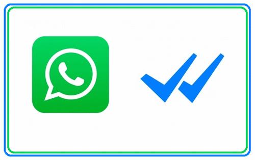 WhatsApp: Áudio ou Texto?