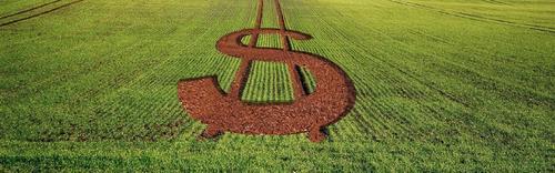 No agronegócio sobra pujança econômica e falta protagonismo político.