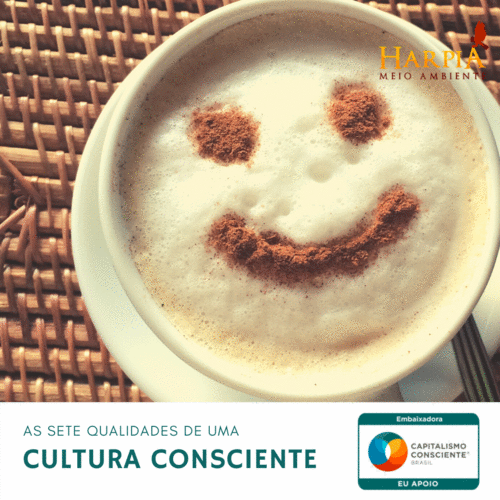 As sete qualidades de uma cultura consciente